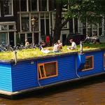<b>Gesetzlicher Anspruch</b><br />Mobiles Arbeiten in den Niederlanden